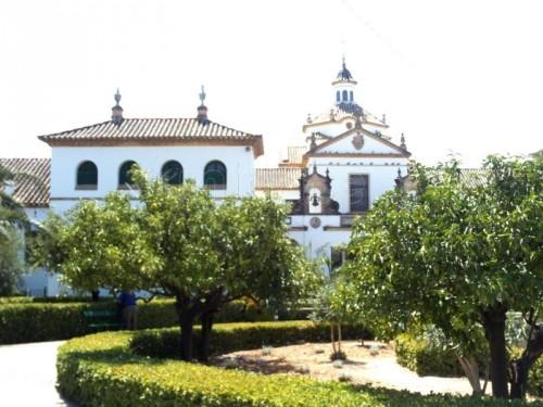 498_residencia-san-fernando-y-santa-elisa_435886